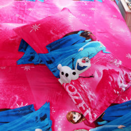 Disney Frozen Bedding set blue pillow case pink