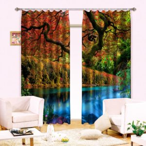 Fantastic 3D Curtain set