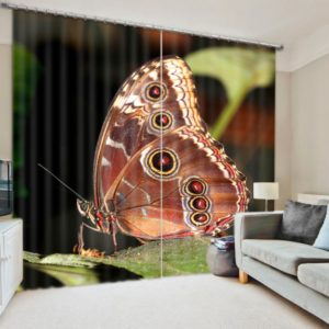Chic Butterfly Curtain Set