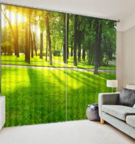Trees And Sunlight Curtain Set with Nature Theme