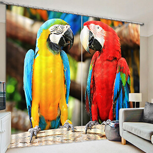 Macaw - Shop By Animal