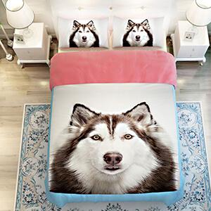 dog - Shop By Animal
