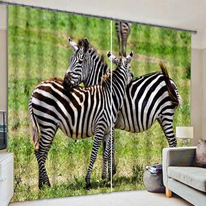 zebra - Shop By Animal