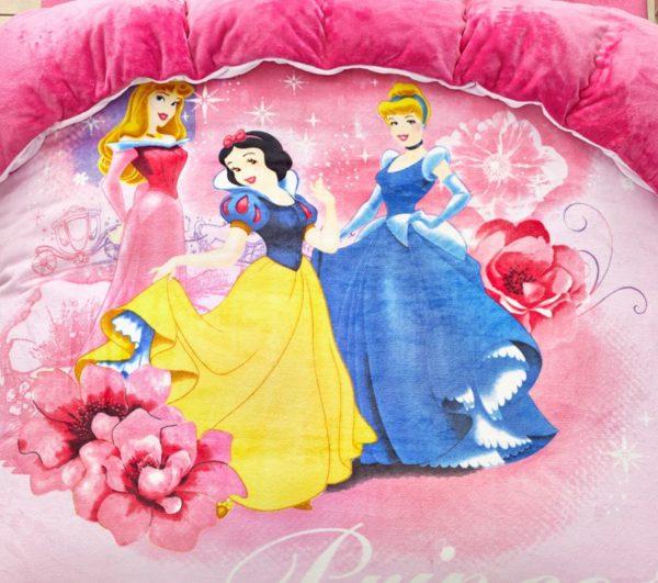 Disney Princess teen girl comforter set 2